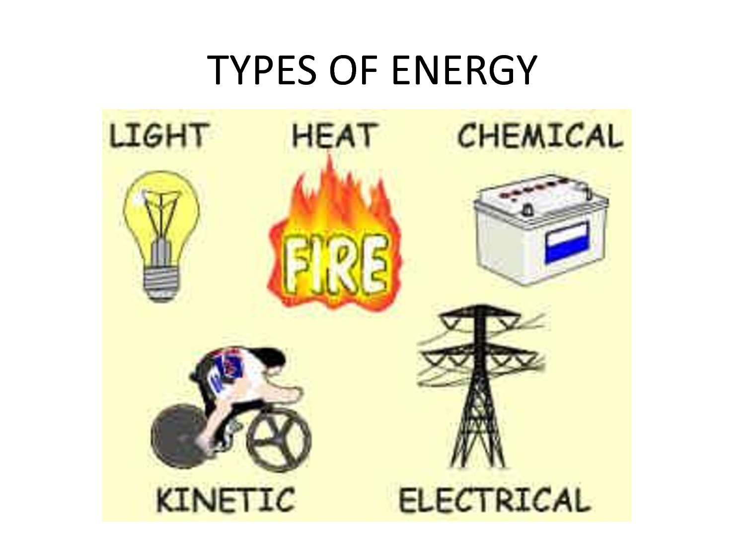 Essential Knowledge 2A1 All Living Systems Require Constant Input Of Free Energy